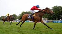 Integral can lord it in Duke of Cambridge