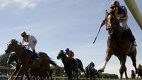 Treve bouncing after Corrida comeback romp