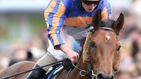 Hans Holbein up for Derby challenge after Chester Vase success