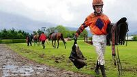 Waxies Dargle proves a muddy marvel in Killarney