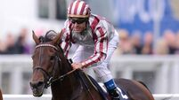 Cirrus Des Aigles in frame for Irish Champion