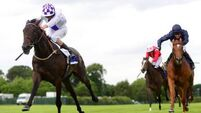 Pleascach set for tilt at Irish Derby