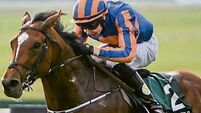 Aidan O'Brien 'delighted' with Gleneagles