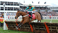 Cork jockey Gavin Sheehan arrives on big stage with Cheltenham World Hurdle win