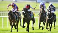 Baffled by handicapper's take on Beresford Stakes