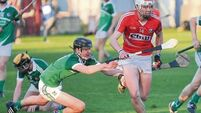Denis Ring delights as Cork minor hurlers roar past Limerick