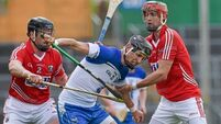 Shane O'Neill: Cork must match Waterford's workrate