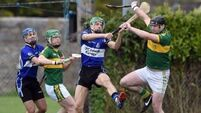 Newtownshandrum down Sarsfields, roll back years in 56-point epic