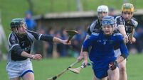 St Francis College Rochestown beat Nenagh CBS in Harty Cup action