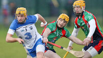 Brian O'Halloran shines out for Waterford