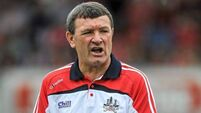 Cork near full strength against weakened Cats