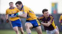 Clare enjoy solid victory over Wexford