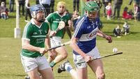 Limerick hurlers forced to battle hard against Laois