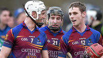 Brian   Lohan hails  UL stars as scoring blitz  blows UCD away in Fitzgibbon Cup