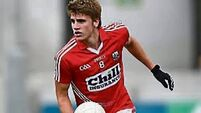 Boost for Cork as Ian Maguire returns from injury to face Limerick