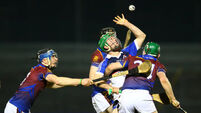 McInerney and Kelly drive UL to Fitzigbbon victory