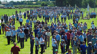 Teagasc expects 10% less sucklers in Cork East