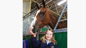 Top show hunter producer Rosemary wins again at Dublin