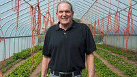 Oliver Moore: Expert says organic far more profitable