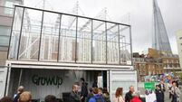 GrowUp Urban Farms has growing future