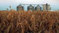 EU agrees 7% cap on growing crops for transport biofuels