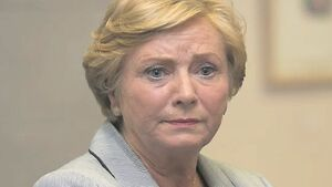 Frances Fitzgerald: Laws needed to tackle online crime