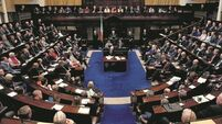 Government suffers first defeat in Dáil vote