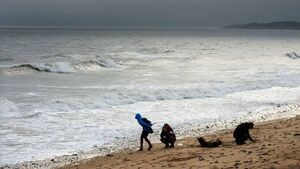 Councillors urge remedial works at east Cork beaches