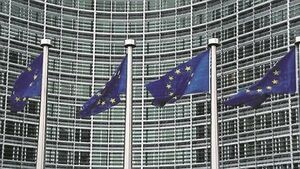 EU parliament vetoes energy drink 'alert' claims