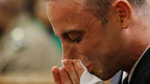 Reeva Steenkamp's dad urges jail for Oscar Pistorius