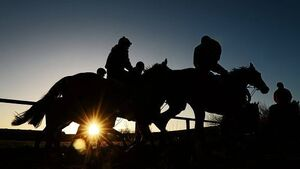 Enda Kenny 'must order raids on rotten horse racing industry'