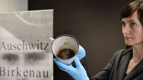 Auschwitz museum staff find jewellery hidden in false base of mug