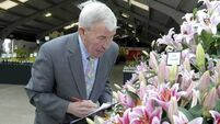 Bloom judge, Jim Buttress is gardening royalty