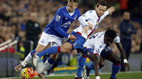 Everton v Crystal Palace - Barclays Premier League - Goodison Park