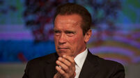 Arnold Schwarzenegger quote terminated by new England regime