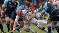 Cardiff's late charge proves too much for Ulster