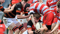 CBC power shakes off gallant Glenstal Abbey