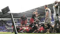 Ashton believes Sarries ready to end Euro misery