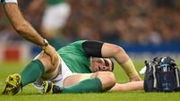Rhys Ruddock called up as Peter O'Mahony's World Cup dream cruelly ended