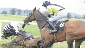Acapela continues Hughes' domination in Thurles