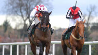 Anthony Curran's Flemenstar in great heart but 'very doubtful' for Cheltenham