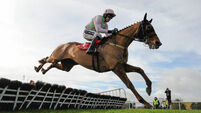 Touch of brilliance means Annie Power better than anything else