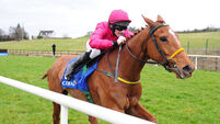 Bonny Kate boosts Grand National hopes with Limerick win