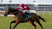 Empire Of Dirt a doubt for Irish National