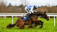 Coral.ie Handicap Hurdle Day – Leopardstown
