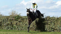 Cheltenham Gold Cup an option for Many Clouds