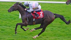 Clondaw Warrior should be in shake-up for Galway Hurdle