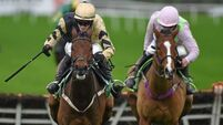 The six top Champion Hurdle contenders in Faugheen's absence