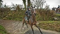 Willie Mullins talks his Cheltenham hopes