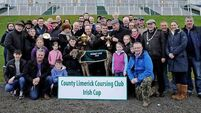 Foot Solution wins Irish Cup